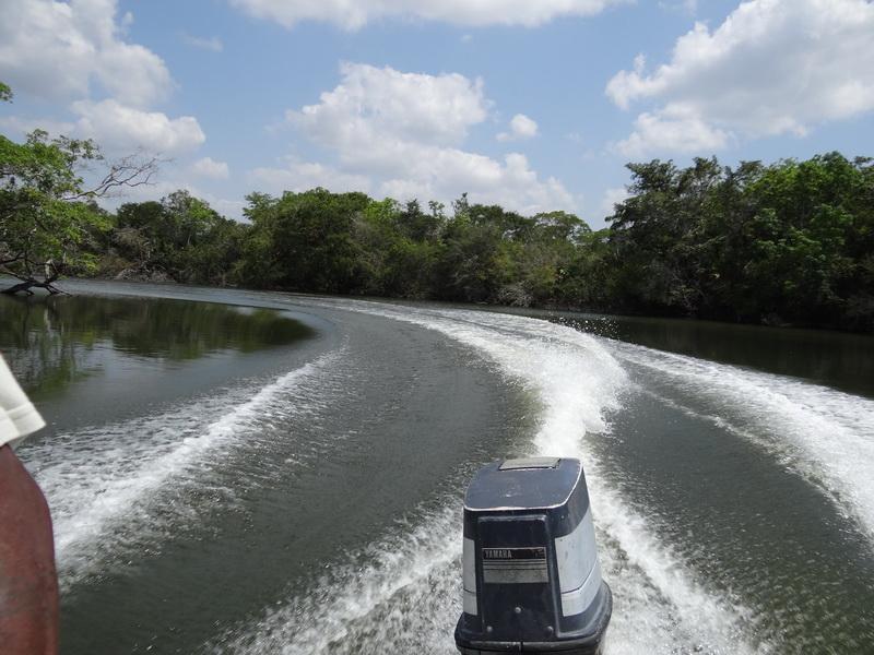 Schnelle Fahrt auf dem New River
