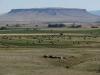 Tafelberg der Prärie