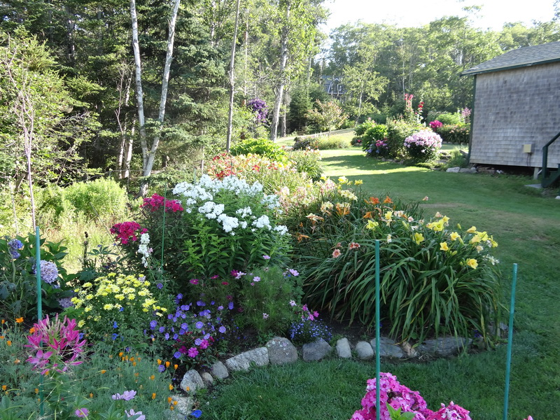 Blumengarten an der Küste Maines