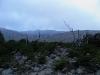 wilde Gegend
