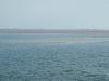 Sandbank im Wattenmeer