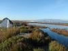 riesiges Sumpfgebiet