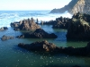 Meerwasserbecken