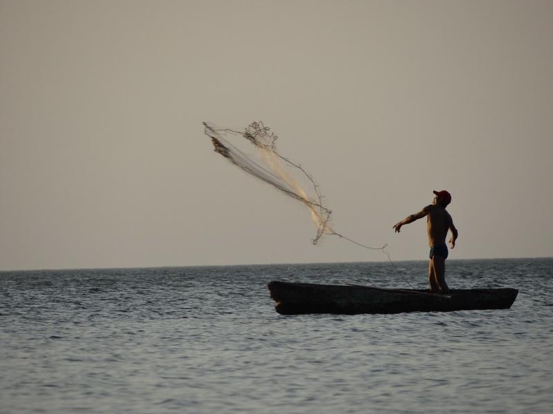 Netzfischer