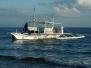 Philippinen Januar/Februar 2010