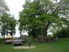 Eiche bei Lublin