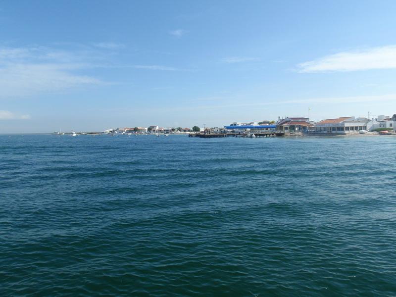 Ilha Armona
