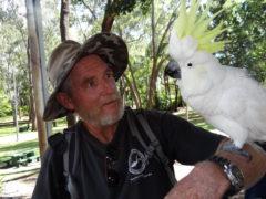 2 Vögel